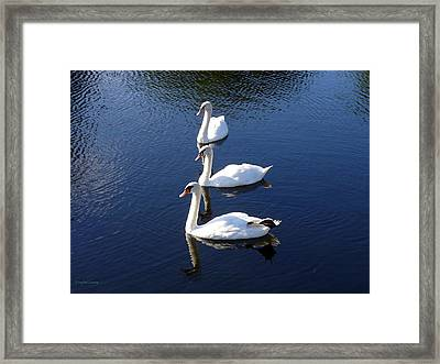 Framed Print featuring the photograph Perfect Family Gathering by Lingfai Leung