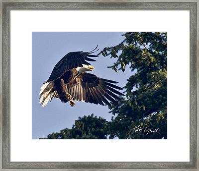 Perfect Landing Framed Print