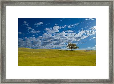 Perfect Landscape Framed Print by Rima Biswas