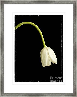 Perfect Love Framed Print by Edward Fielding