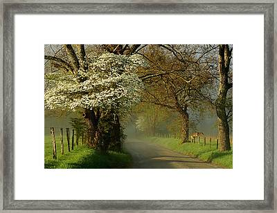 A Perfect Morning Framed Print by Deb Campbell