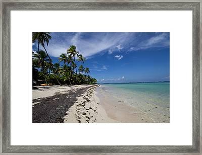 Perfect Paradise Beach With Palm Trees Framed Print by Katia Singletary - Vwpics