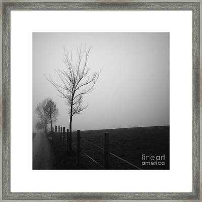 Perfect Sense Framed Print