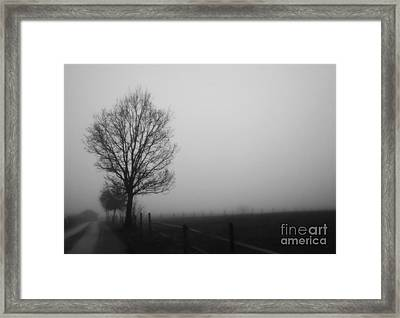 Perfect Sense II Framed Print
