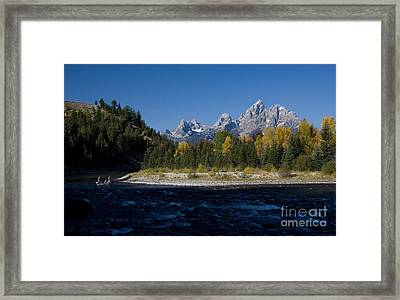 Perfect Spot For Fishing With Grand Teton Vista Framed Print