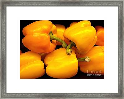 Perfect Yellow Peppers Framed Print by Kathy Baccari