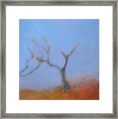 Perfection Framed Print by Andrea Friedell