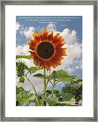 Perfection In The Eye Of The Beholder Framed Print