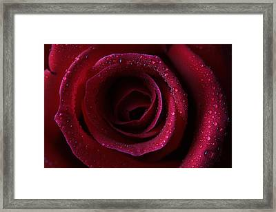Framed Print featuring the photograph Perfection by Keith Hawley