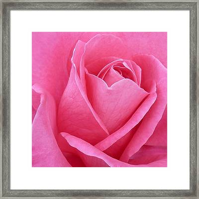 Framed Print featuring the photograph Perfection by Kim Andelkovic
