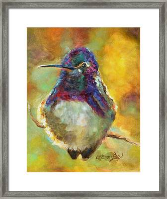 Perfectly Plump Framed Print