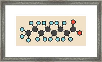 Perfluorooctanoic Acid Molecule Framed Print
