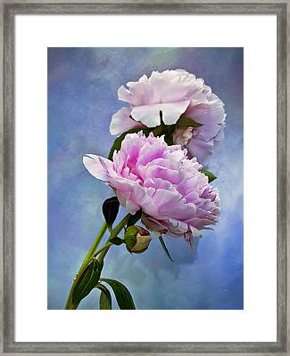 Perfume And Powdery Pastels Framed Print by Theresa Tahara