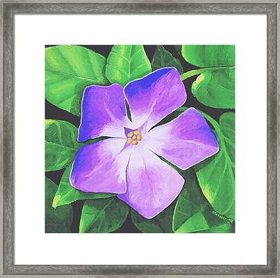 Framed Print featuring the painting Periwinkle by Sophia Schmierer
