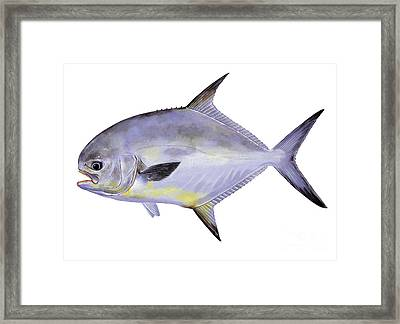 Permit Framed Print by Carey Chen