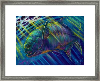 Permit To Greatness  Framed Print by Yusniel Santos