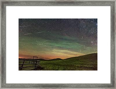 Perseid Meteor Shower Looking North 2016 Framed Print by Alan Dyer