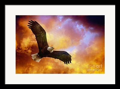 Eagle In Clouds Framed Prints