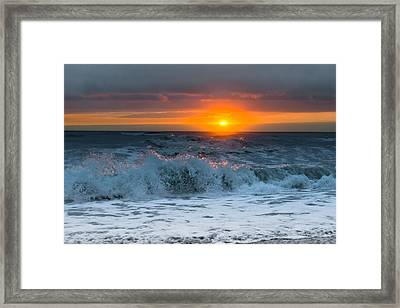Framed Print featuring the photograph Perseverance by Melanie Moraga