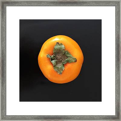 Persimmon Framed Print by Julie Gebhardt