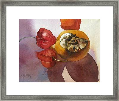 Persimmon Still Life Framed Print by Alfred Ng