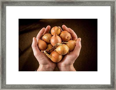 Person Holding Brown Onions Framed Print by Aberration Films Ltd