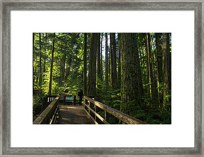 Framed Print featuring the photograph Person Standing On A Viewing Platform by Robert Postma