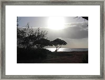Personal Reflections Framed Print by Kimberly Davidson