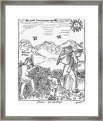 Peru Harvesting Potatoes Framed Print by Granger