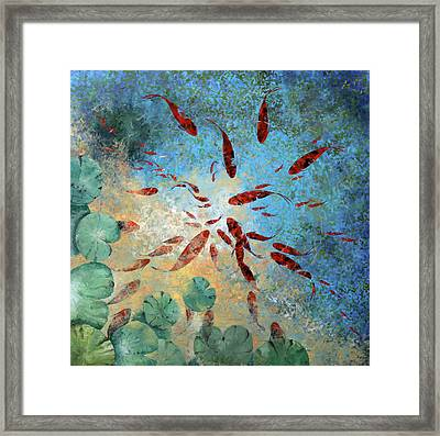 Koi Rotanti Framed Print by Guido Borelli