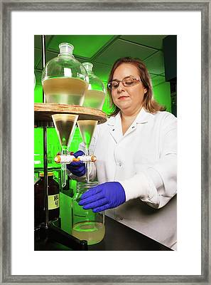 Pesticide Research Framed Print