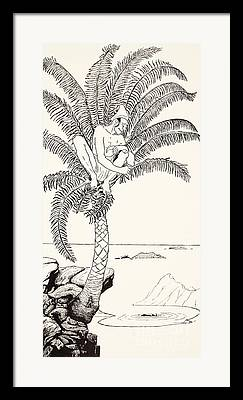 Pen And Ink Palm Trees Drawings Framed Prints