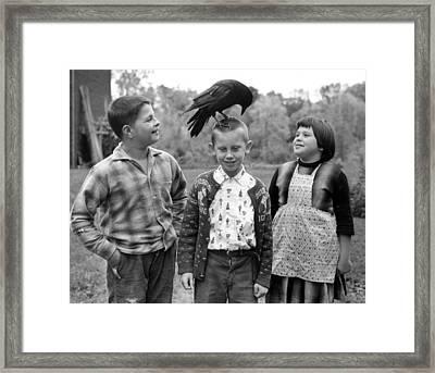Pet Crow Framed Print