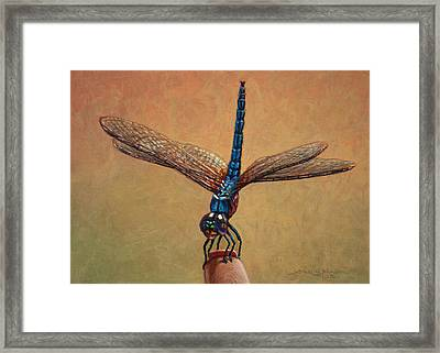 Pet Dragonfly Framed Print