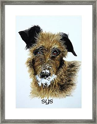 Pet Portraits Now Available Framed Print