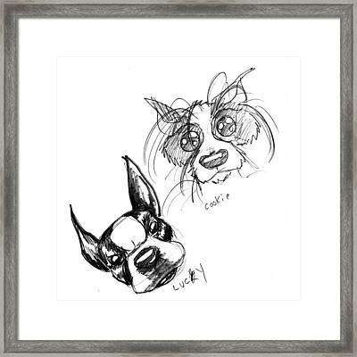 Pet Sketches 3 Framed Print