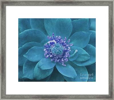 Petal Mandala In Turquoise Framed Print
