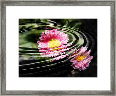 Petal Ripple Framed Print