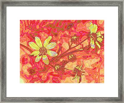 Petalia Framed Print by Wendy J St Christopher