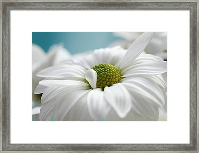 Petal Cloud Framed Print