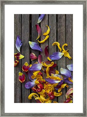 Petals Abstract Framed Print by Svetlana Sewell