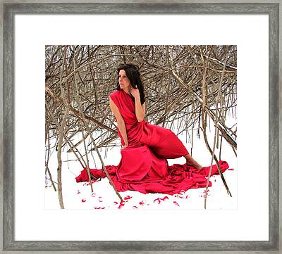 Petals In The Snow Framed Print by Shakaya Leone