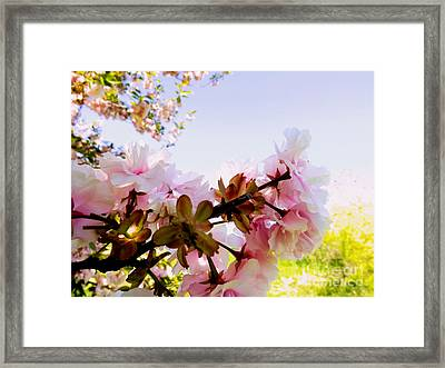 Framed Print featuring the photograph Petals In The Wind by Robyn King