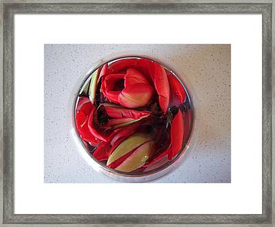 Petals In Vase  Framed Print by Conor Murphy