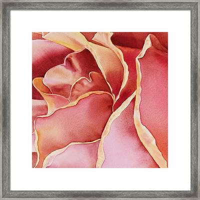 Petals Petals II  Framed Print by Irina Sztukowski