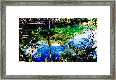 Peter Creek Blues Framed Print by Caroline Gilmore
