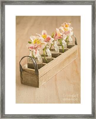 Petites Fleurs Framed Print by Edward Fielding