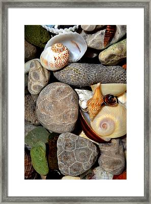 Petoskey Stones Ll Framed Print by Michelle Calkins