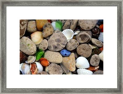 Petoskey Stones Lll Framed Print by Michelle Calkins