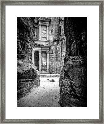 Petra Camel Framed Print